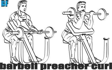Barbell Preacher Curl nasıl yapılır?