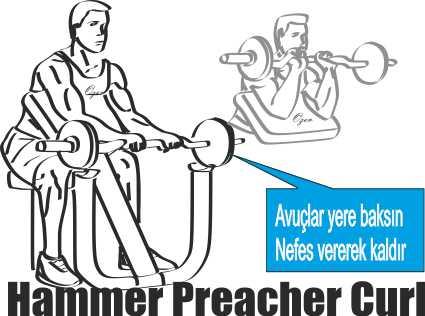 Seated Hammer Barbell Preacher Curl Nasıl Yapılır?