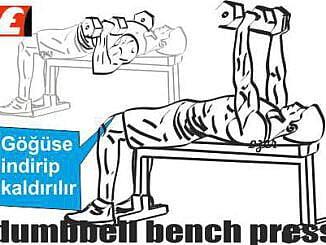 En iyi Fitness Antrenman Programı Nasıl Yapılır?