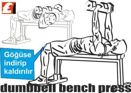 Dumbbell Bench Press nasıl yapılır?