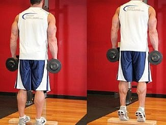 Standing Dumbbell Calf Raises - Calf Exercise