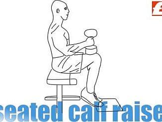 Dumbbell Seated Calf Raise Hareketi Nasıl Yapılır?