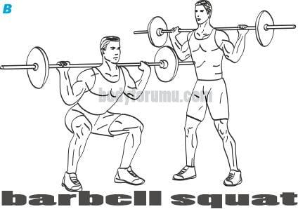 Barbell Squat Nasıl Yapılır?, Nereyi Çalıştırır?
