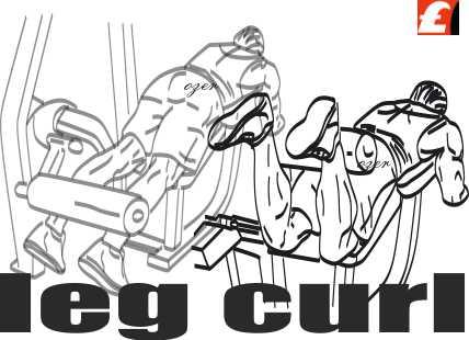 Leg curl machine harekrti nasıl yapılır?