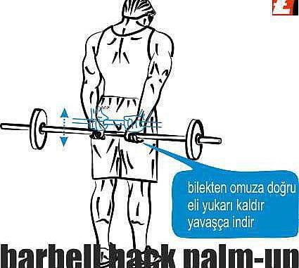 Barbell Back Palm-Up Nasıl Yapılır?