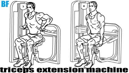Triceps Dip Extension Machine Nasıl Yapılır?