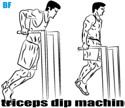Triceps Parallel Bar Dip Nasıl Yapılır?