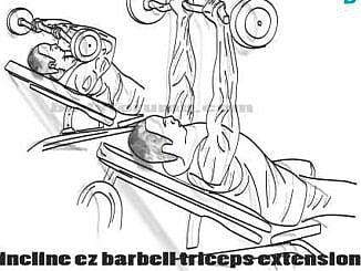 Dumbbell Tricep Extensions tekniği
