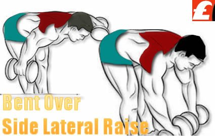 Dumbbell Bent Over Side Lateral Raise