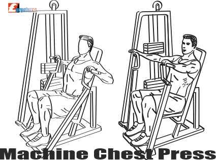 Seated Chest Press Machine Basıl Yapılır?