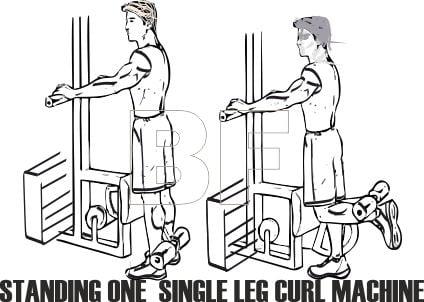 Standing Single Leg Curl Machine Nasıl Yapılır?