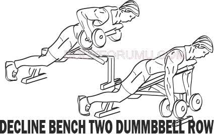 Incline Bench Two Dumbbell Row